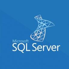 SQLSvrEntCore 2019 SNGL OLP 2Lic NL Chrty CoreLic Qlfd
