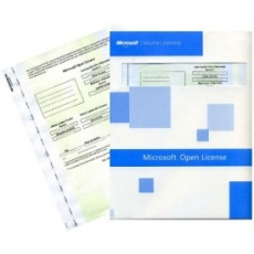 Exchange Enterprise CAL LicSAPk OLP NL USER woSrvcs